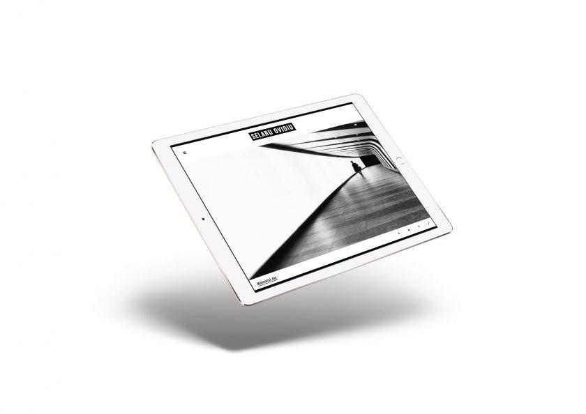 SELARU OVIDIU – Web design
